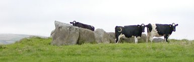 Wedge-tomb at Breastagh.