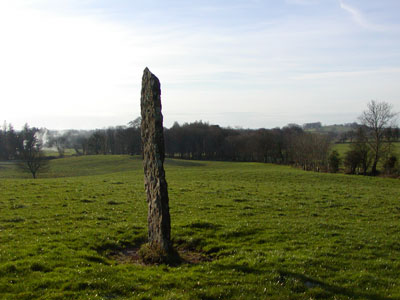 Edge-on view of slab at Tyredagh Lower